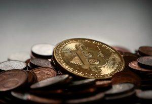 bitcoin-ארז פישלר