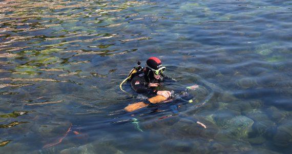 מדריך מיוחד על צלילה באדיבות תום פוסולשני